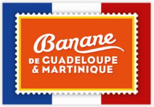 Logo fond couleur ugpban